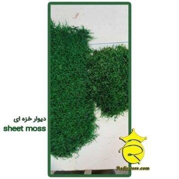 دیوار خزه ای sheet moss